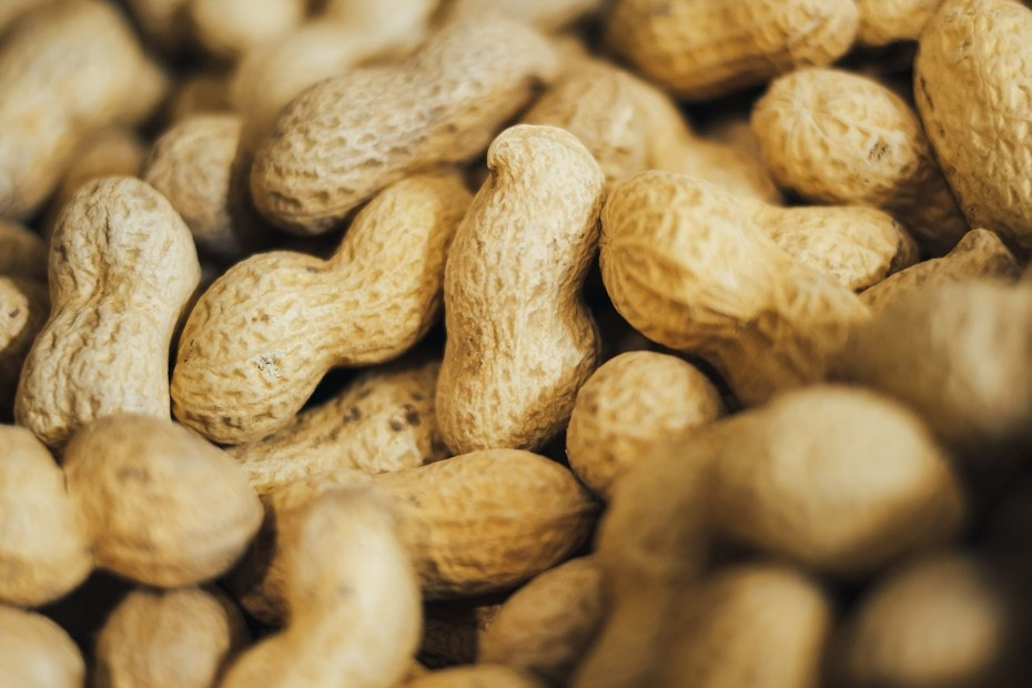 ¿Que es el cacahuate?
