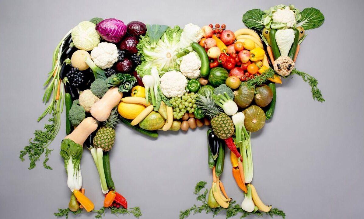 Suplementos que debes consumir si eres vegano
